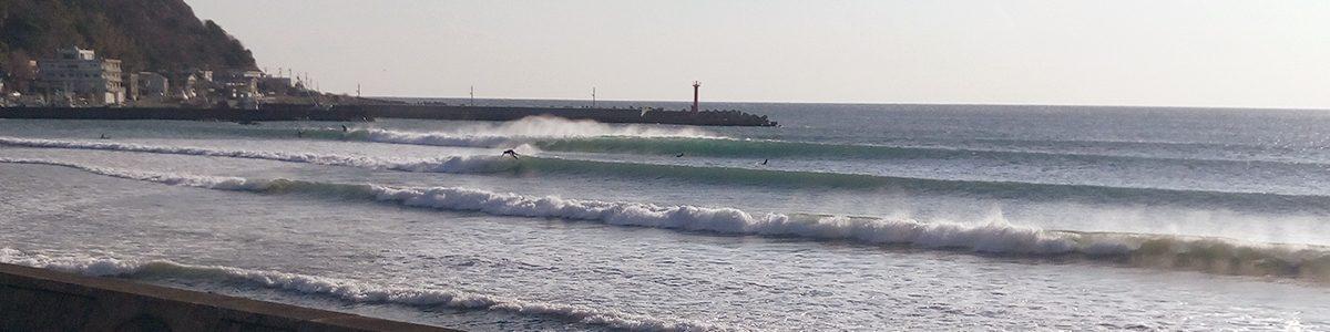 LM Surf Design